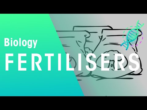 What are fertilisers? | Biology for All | FuseSchool