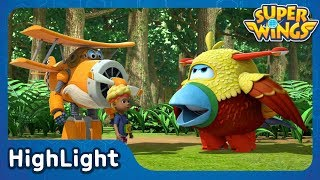 Feathered Friends | SuperWings Highlight | S1 EP21