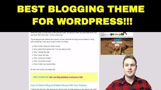 Millionaire Blogger Reveals WordPress Theme!