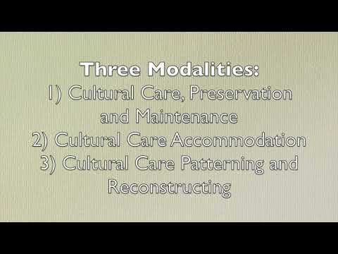 Transcultural Nursing Care Theory