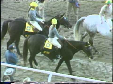 Kelso & Forego - 1983 Jockey Club Gold Cup