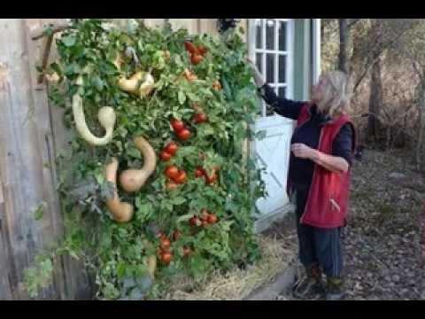vertical gardening vegetables ideas youtube