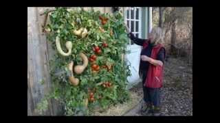 Vertical Gardening Vegetables Ideas