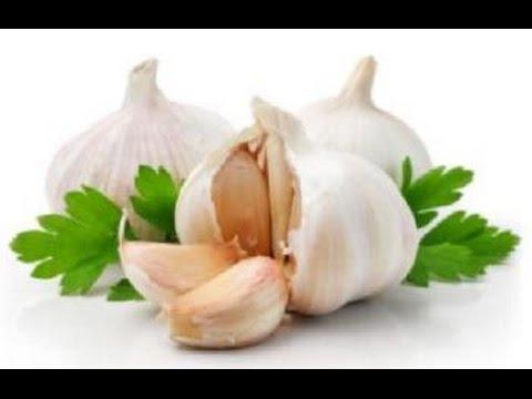 Garlic Breeding Efforts in Israel to Develop Disease Resistance