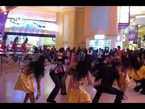 suncoast casino flash mob proposal