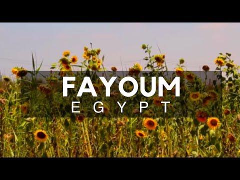 Fayoum, Egypt - Fayoum Oasis - The City of Waterfalls Located 100 Kilometers Southwest of Cairo