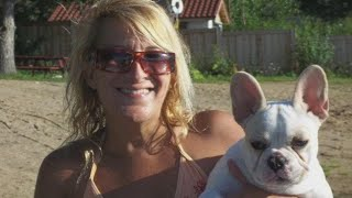 Why Did French Bulldog Attack Its Owner in Illinois?