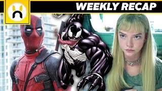 Venom First Look, Fox Marvel Shakeups, and MORE | Weekly Recap 1/13