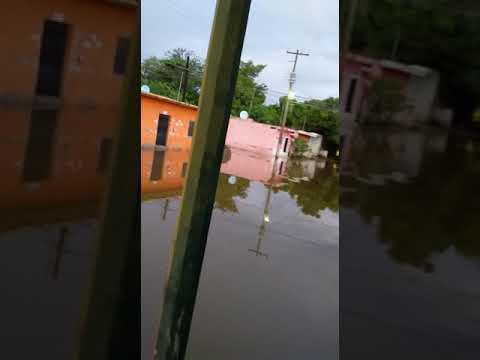 Por segundo día consecutivo, colonias del municipio de Rosario se inundaron