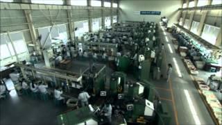 Завод по производству насосов LEO(Производство насосов и насосного оборудования LEO. http://shop.sigma.ua/catalog/nasosy_aquatica/, 2014-07-29T11:22:51.000Z)