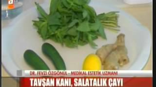 Salatalık Çayı Tarifi - 27 06 2014 Atv Ana Haber - Doktor Fevzi Özgönül