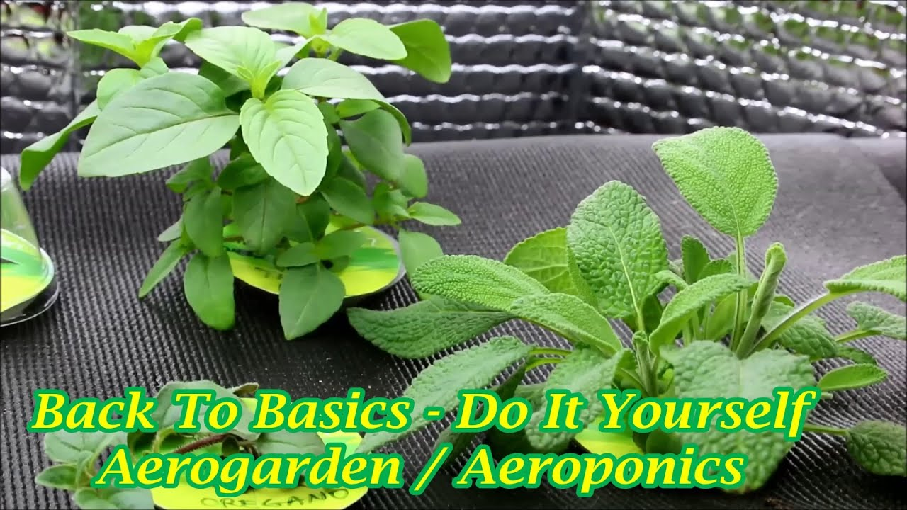 Do It Yourself Aerogarden / Aeroponics
