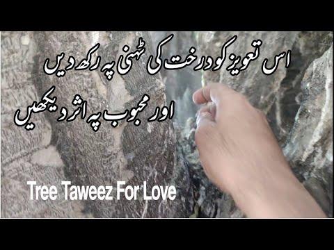 Download Mohabbat Ka Ped Wala Taweez e Hub Khas | प्यार के लिए पेड़ का तावीज़