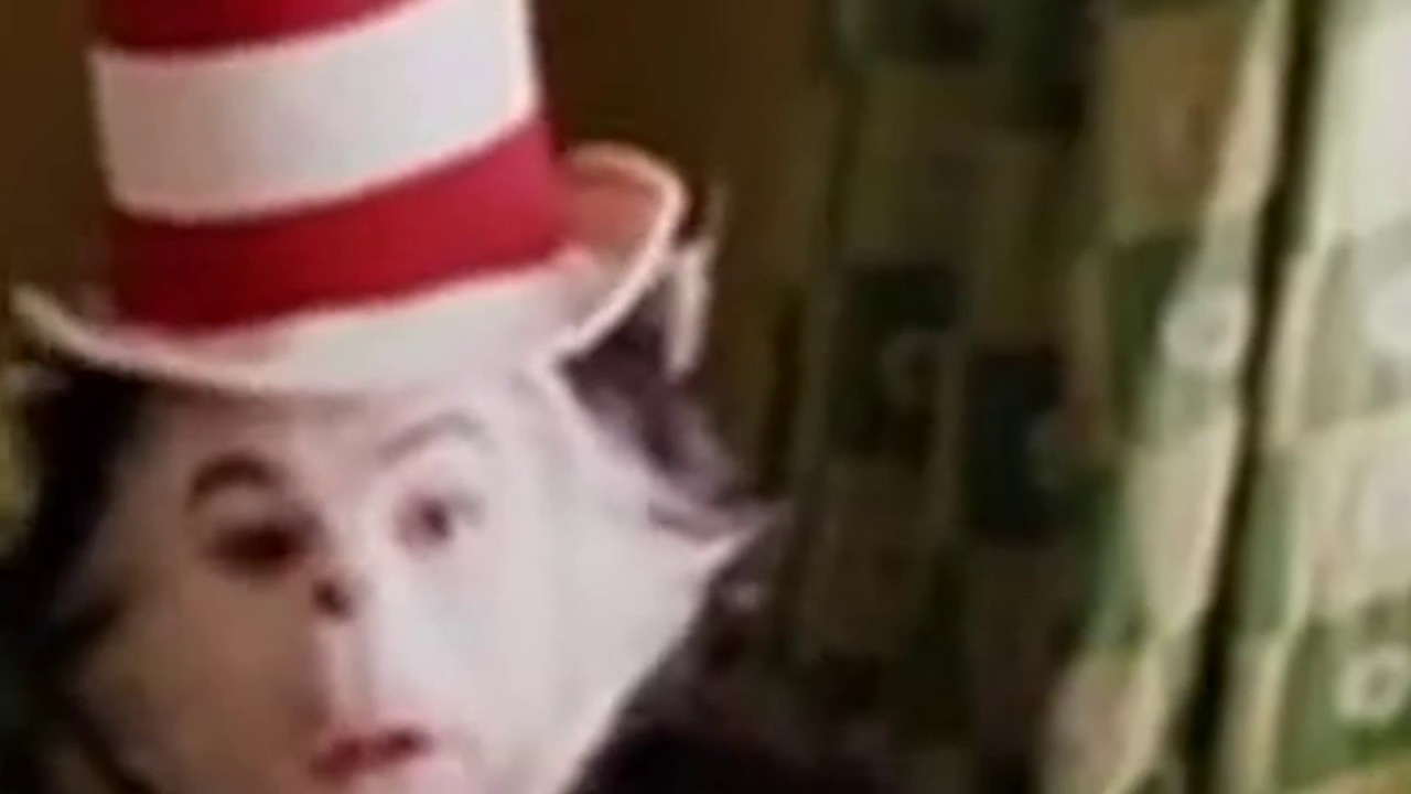 7550f74e Cat in the Hat FUN song but it's a zoom video - YouTube