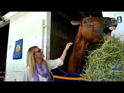 2015 Kentucky Derby Horse - Dortmund - Interview with Bob Baffert (VIDEO)