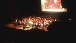 The Legend Of Zelda: Symphony of the Godesses - Gerudo