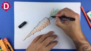Cenoura com folhas - Como desenhar - inteira com dicas