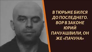 Download Бился до последнего. Вор в законе Юрий Пачуашвили, он же «Пачуна» Mp3 and Videos