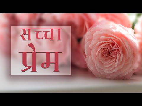 True love never materializes meaning in hindi