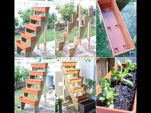 Benefits of Growing a Home Vegetable Garden | Home Vegetable Garden Design Ideas
