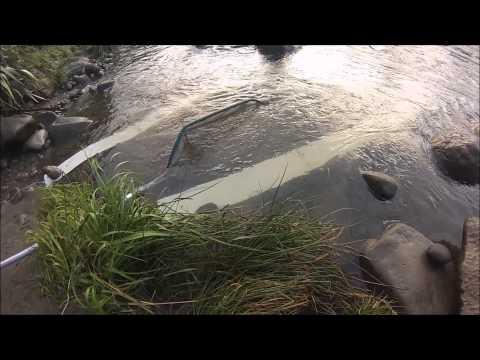 Whitebaiting 2014 NZ - South Taranaki