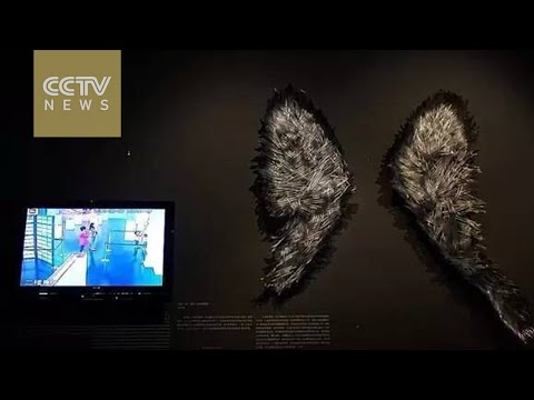 Broken Angel: Spoiled kids spoil glass artwork in Shanghai