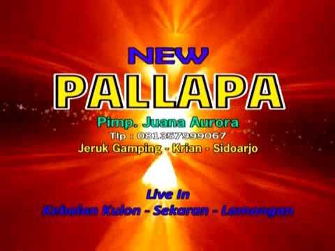 New pallapa puing puing live kebalankulon lamongan
