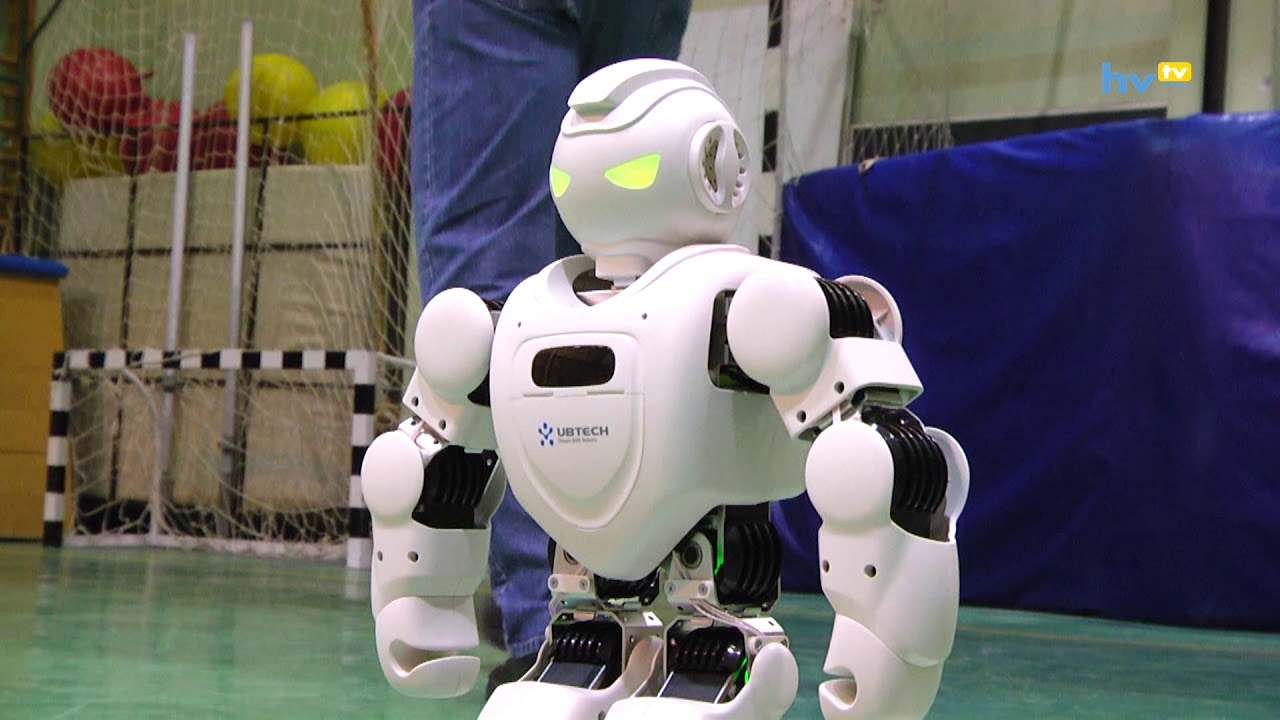 Download Humanoid robotok a Thökölyben