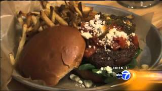 Hungry Hound - with Steve Dolinsky - WLS-TV