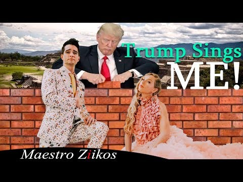 taylor-swift---me!-(cover-by-donald-trump)