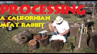 Processing A Meat Rabbit
