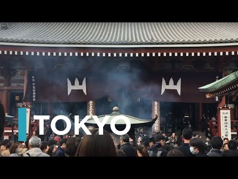 Study Abroad in Tokyo With IES Abroad