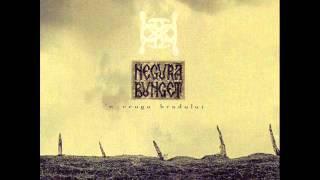 Negurã Bunget-IIII(Iarnã)