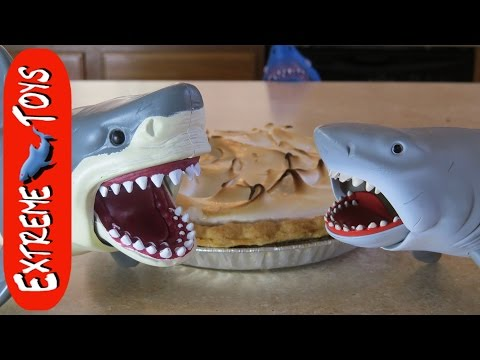 Mystery of the Shark and the Pie. What Shark Toy Ate it?