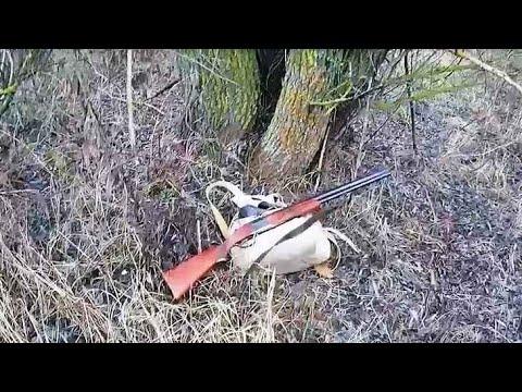 суонн, гектор фото затвора самострела на зайца светящимися