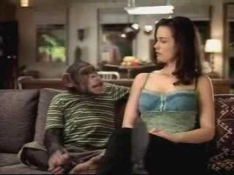 Bud light monkey commercial youtube bud light monkey commercial aloadofball Gallery