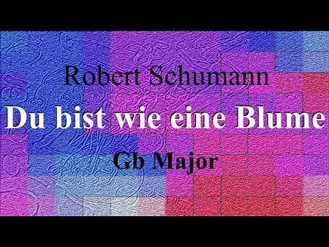 Du bist wie eine Blume - Robert Schumann - accompaniment in Gb major