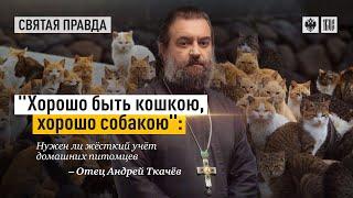 Закон о домашних животных. Протоиерей  Андрей Ткачёв.