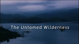 The Untamed Wilderness