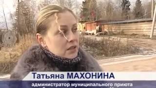 Остановите убийство собак в Сергиевом Посаде