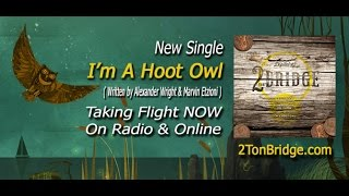 "2Ton Bridge — ""I'm A Hoot Owl"" from the DIGITAL 45 (2015) Official Lyric Video"