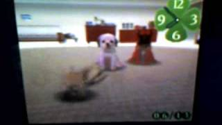 Nintendogs: Dalmation and Friends
