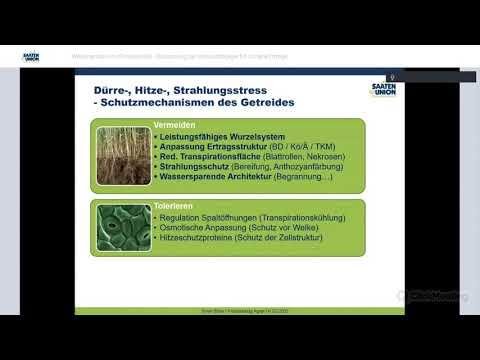 praxisdialog.agrar: #12   Weizenanbau im Klimawandel – Anpassung Anbaustrategie für sichere Erträge