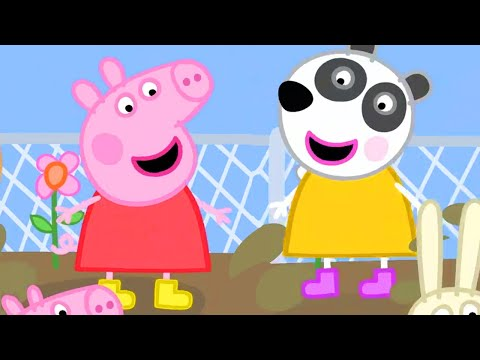 Peppa Pig Full Episodes | Season 8 | Compilation 42 | Kids Video