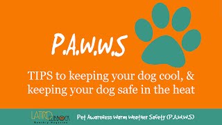 Episode 2: Adoption, Latino Lubbock Magazine - Pet Awareness Warm Weather Safety (P.A.W.W.S) Series