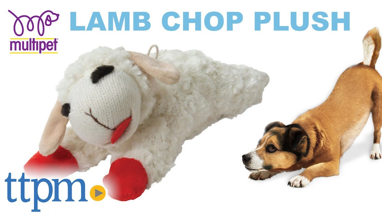 Lamb Chop Plush From Multipet Youtube