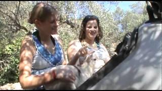 Wir lieben  Tiere Teil 3  Jeep Safari Mallorca