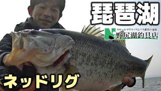 今日の琵琶湖♪2017.3.29 thumbnail