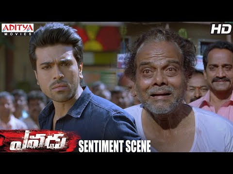 Yevadu Movie || Ram Charan and LB Sriram Sentiment Scene || Ramcharan, Shruti Haasan thumbnail