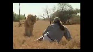 Человек против льва(Африка) - эксклюзивное видео 2016